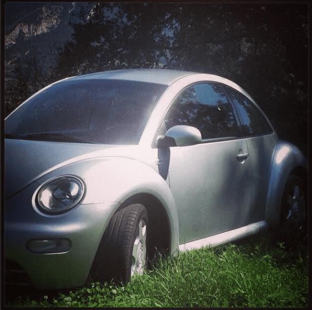 beetleplatawallapop
